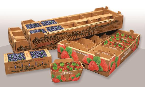 FruBox for fruits packaging